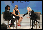 theview2014_01
